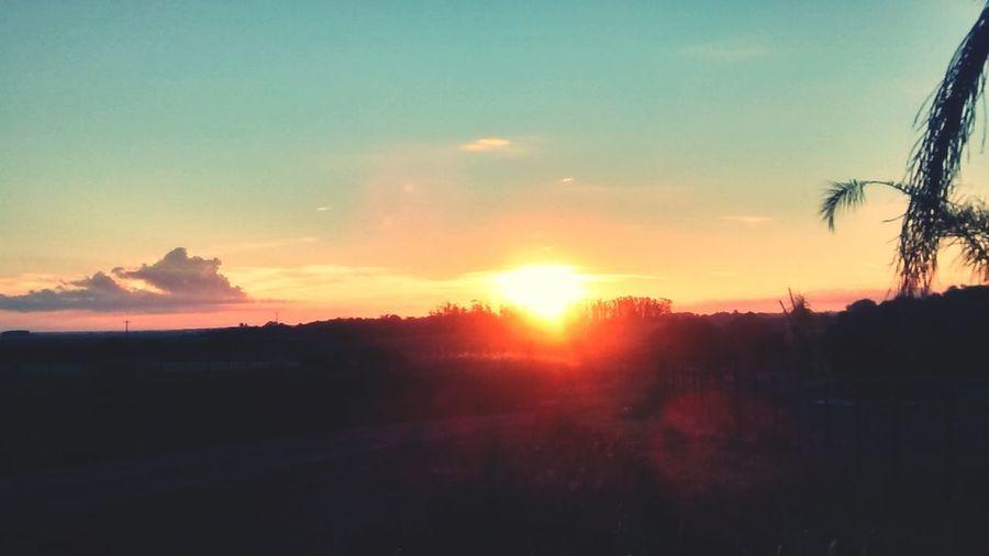 Sun 🌄 Sunlight Sunset Sky Sun Nature First Eyeem Photo