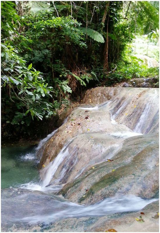 Taking Photos Waterfall Beautiful Nature Pacific Islands