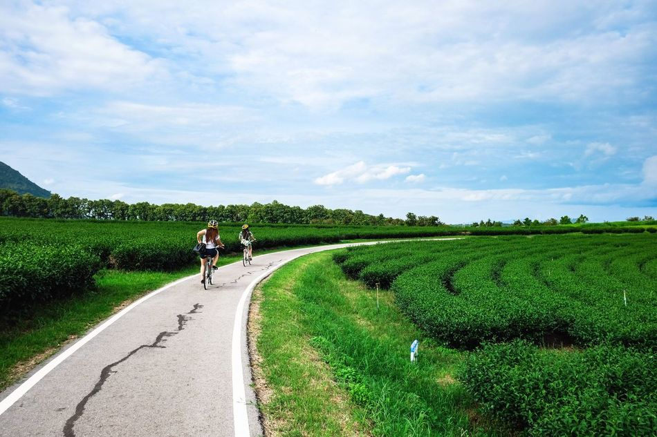 Beautiful stock photos of fahrrad, Beauty In Nature, Bicycle, Childhood, Cloud - Sky