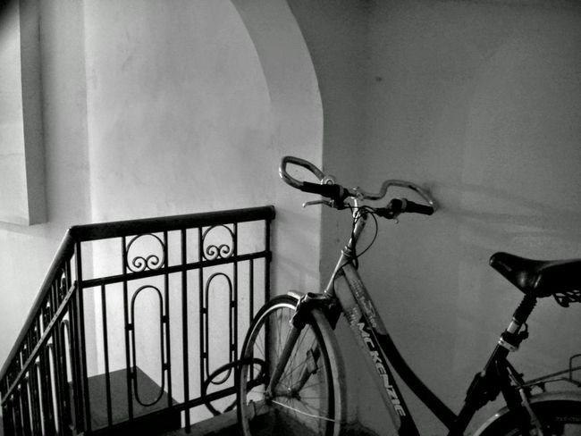 Monochrome Learn & Shoot: Balancing Elements Mckenzie Shades Of Grey Celebrate Your Ride Interior Views Black And White Black & White Black&white Stairs Bicycle Mobile Photography Smartphone Photography AMPt_community Shootermag Showcase March Vault Arch Architecture City Urban Sports Cope Light And Shadow Shadows & Lights