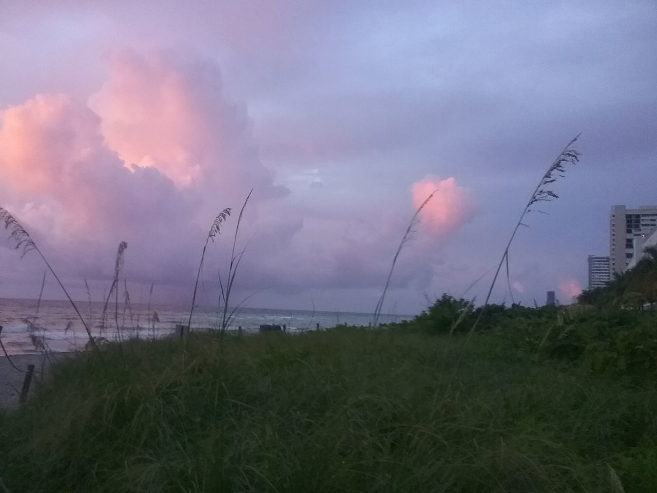 grass, sky, nature, outdoors, sea, cloud - sky, tranquil scene, no people, scenics, beauty in nature, sunset, tranquility, growth, water, beach, day