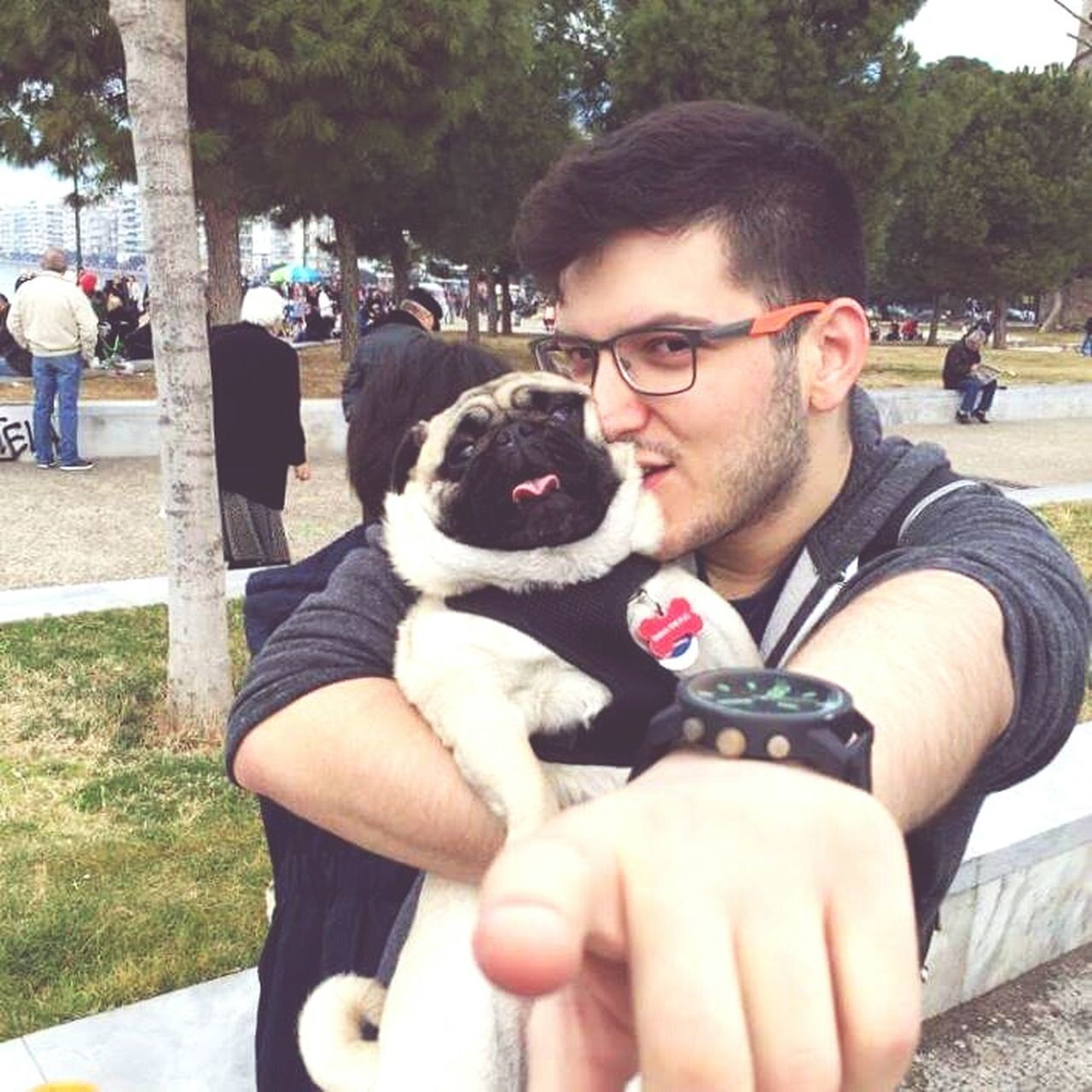 Pug, Pug Life  Proud Pug Dad, Pugrules First Eyeem Photo
