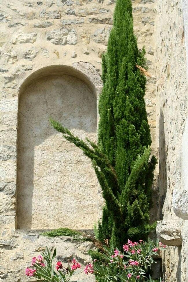Lagrasse Südfrankreich Traveling