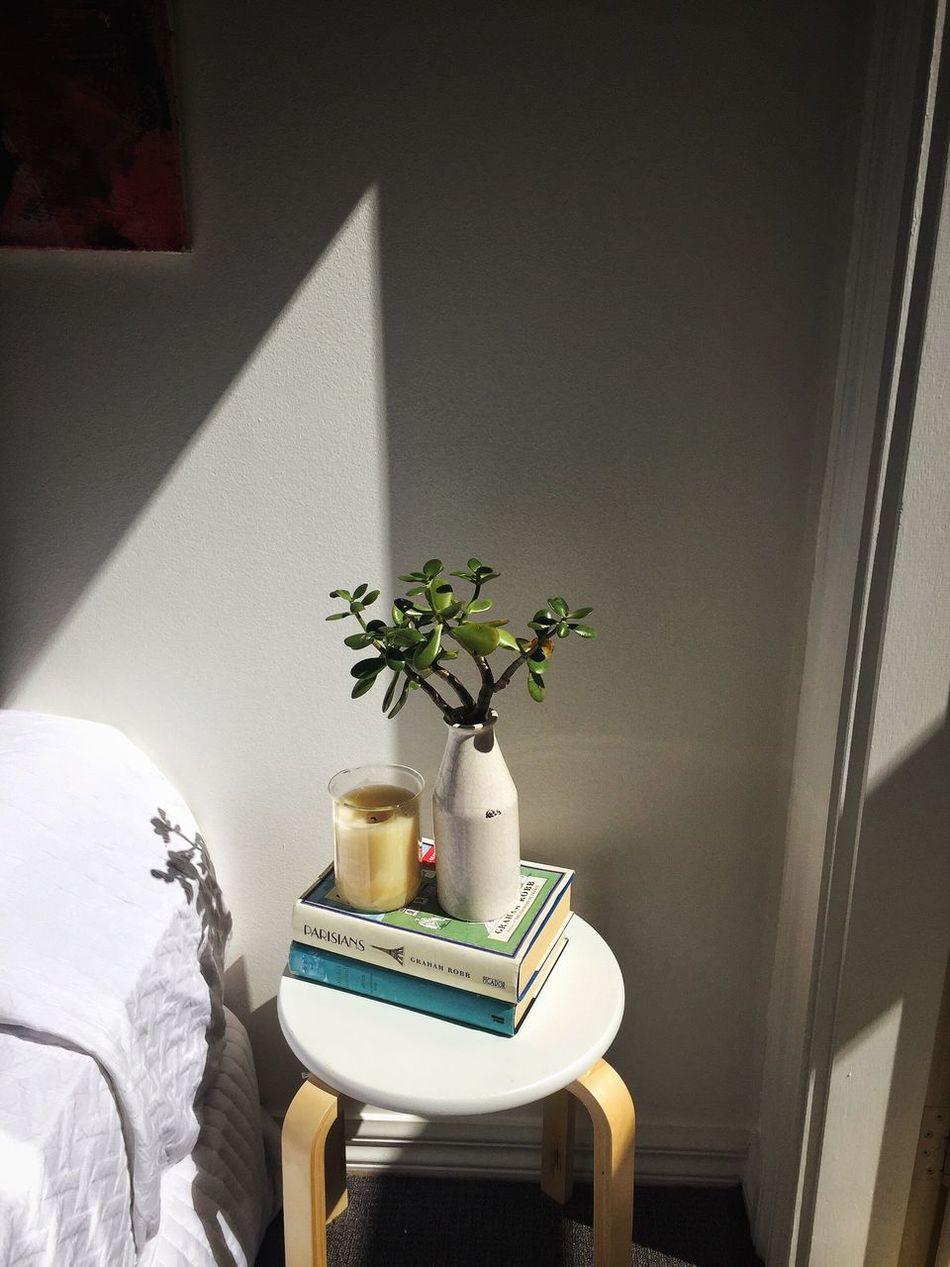 Beautiful stock photos of bücher, flower, vase, table, indoors