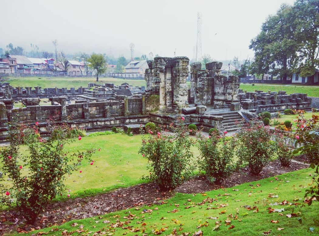 Ruins are too beautiful in a way💞Landscape With Whitewall Flowers, Nature And Beauty Nature Photography Eye Em Nature Lover Travel Photography Kashmirdiaries Stones And Pebbles Kashmir , India Eye Em Best Shots Travel Destinations EyeEm Best Shots Beautiful Nature Awantipora Ruins Awantiporam Scenery Landscapes With WhiteWall Scenics Landscapes With WhiteWall Things I Like Garden Photography Garden Urban Spring Fever Showcase April New Delhi Showing Imperfection My Favorite Photo