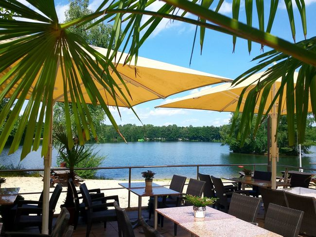Lake View Lakeside At The Lake Sunshades Looking Through Palm Leaves Blue Sky Tables And Chairs on a restaurant Terrace, Beautiful View Looking Comfy  Einladend Gemütlich Ladyphotographerofthemonth Landscape Showcase August Springhorstsee, Burgwedel, Lower Saxony Two Is Better Than One Eyeem Collection The EyeEm Collection