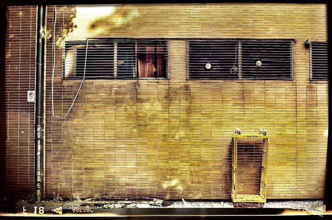 Grimewindow StillLifePhotography Backyard
