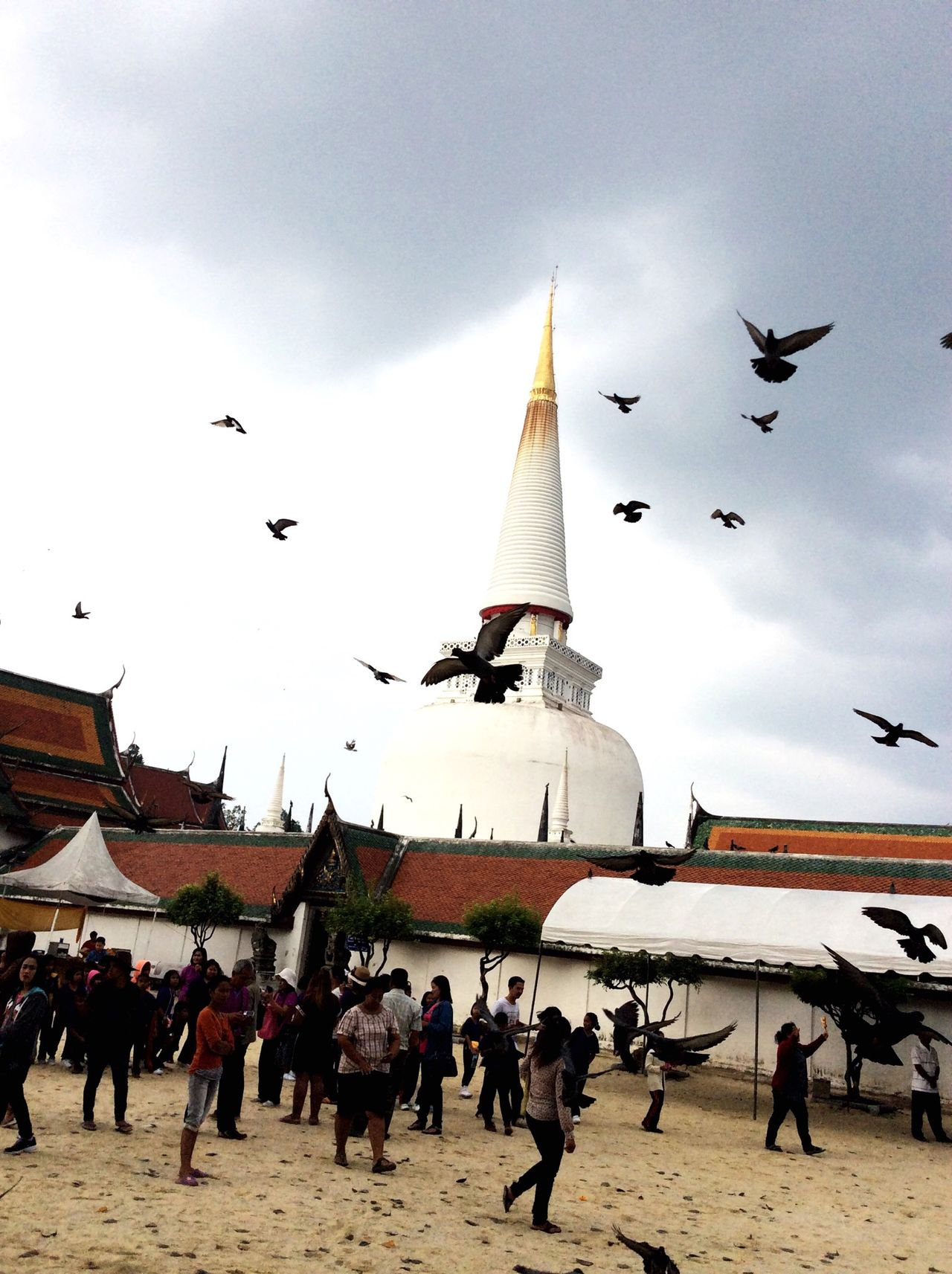 Nakhon Si Thammarat Temple Thailand Travel Photography Travelling Vacation Time Birds Nature Sky Capturing Movement