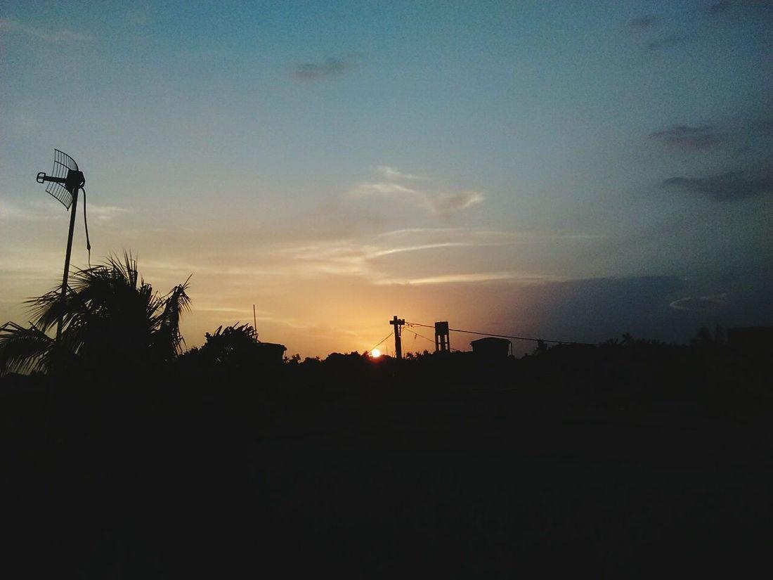"""""""Cada pôr do sol que vejo me inspira o desejo de partir para um oeste tão distante e belo quanto aquele onde o sol sumiu."""" By Henry David. Sunset Reflection Tree Sky No People Day Meuquintal"""