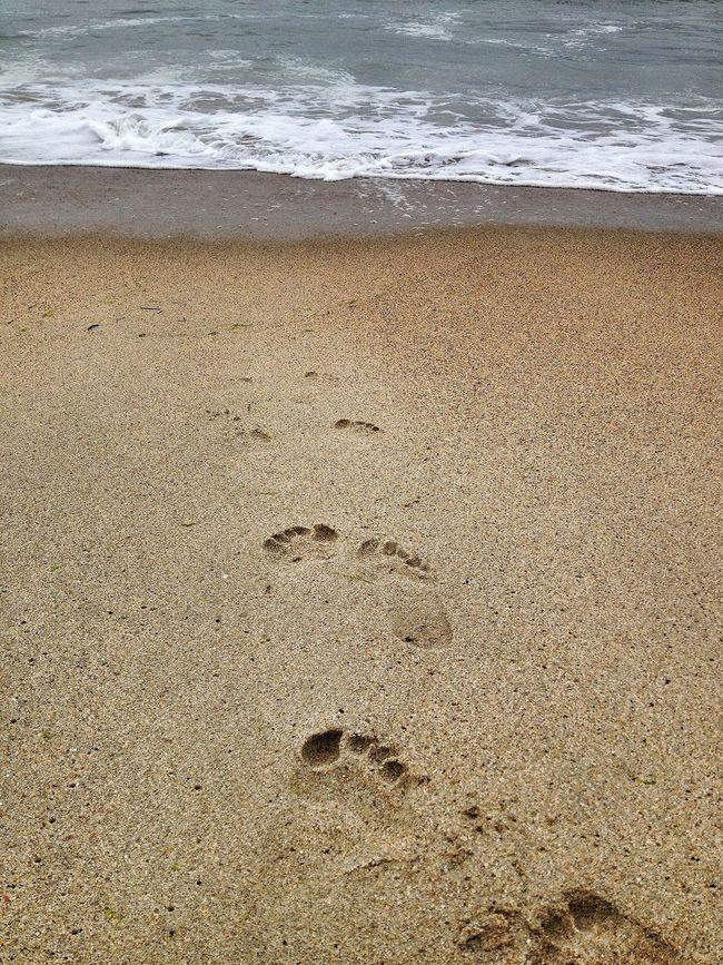 Photography Beach Seascape Seaside