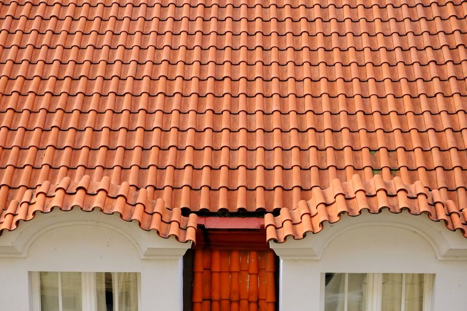 Beautiful stock photos of roof, Architecture, Building Exterior, Built Structure, Day