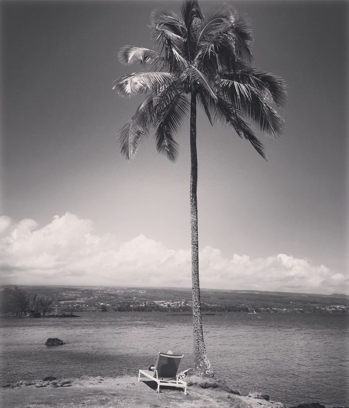 Vacationing! Palm Tree Tree Sky Sea Water Beach Nature Cloud - Sky Beauty In Nature Tranquility Scenics Day Outdoors EyeEmNewHere No People Horizon Over Water Hilo  Bigisland Hawaii Vacation Time Relaxing Chilaxing  Chilling Black & White Blackandwhite Photography