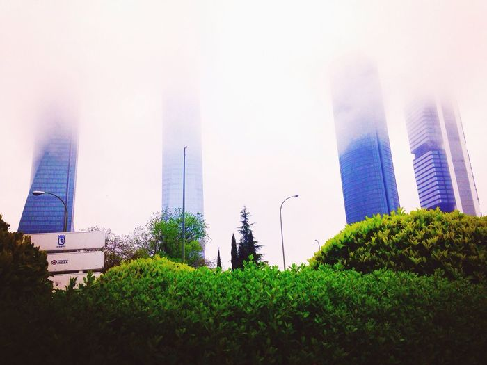 Architecture Built Structure Building Exterior City Outdoors Skyscraper Grass Day Torres De Madrid Modern Sky Travel Destinations No People Tree Clear Sky Nature Urban Skyline Cityscape