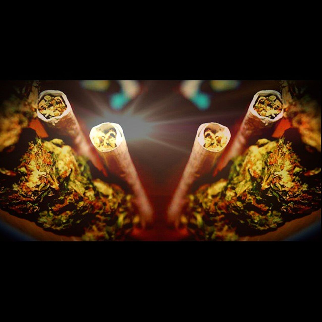 Enjoying some MMJ Medical Wayfo Chronic  marijuana ganja living that klco420 highsociety topshelflife stonernation