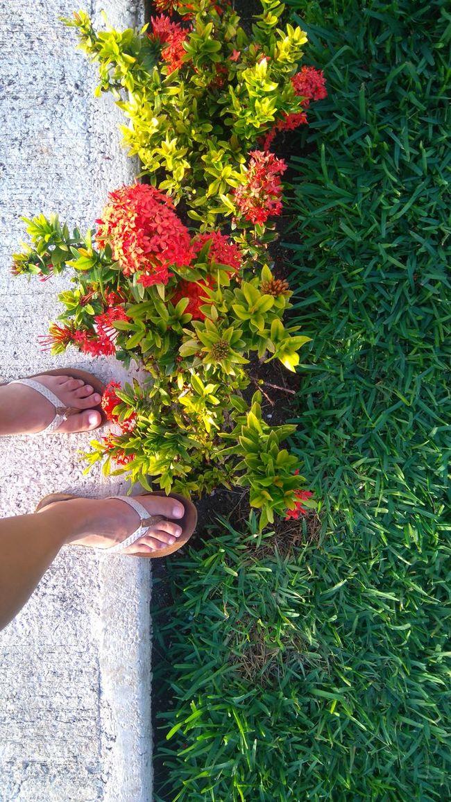 Mis pasos Hanging Out Enjoying Life My Feets Nature