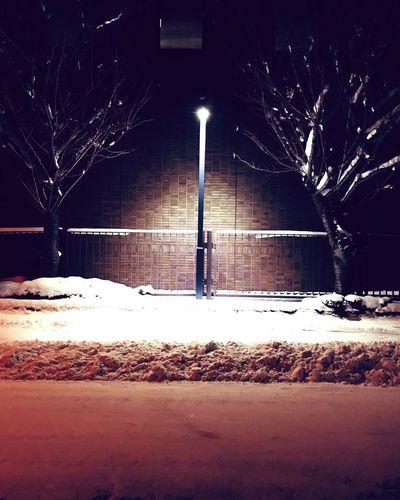 Snow Winter Cold Temperature Night Illuminated Weather Street