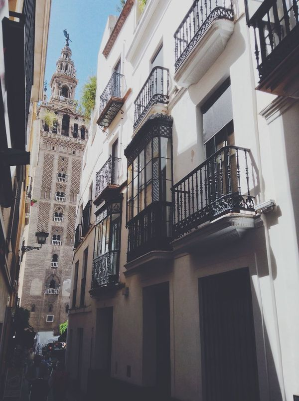 Sevilla Giralda Tower Cathedral EyeEm Best Shots Taking Photos Photography Colors Picoftheday New