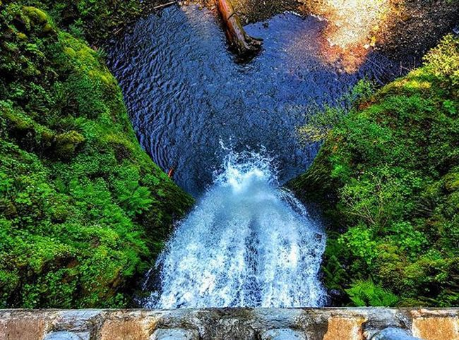 Lower Multnomah Falls from above. Oregon MultnomahFalls Multnomah Nexus6 Green Waterfall Nexus6 Roadtrip Neverstopexploring  Americathebeautiful  Columbiarivergorge Columbiariver Hiking Nature