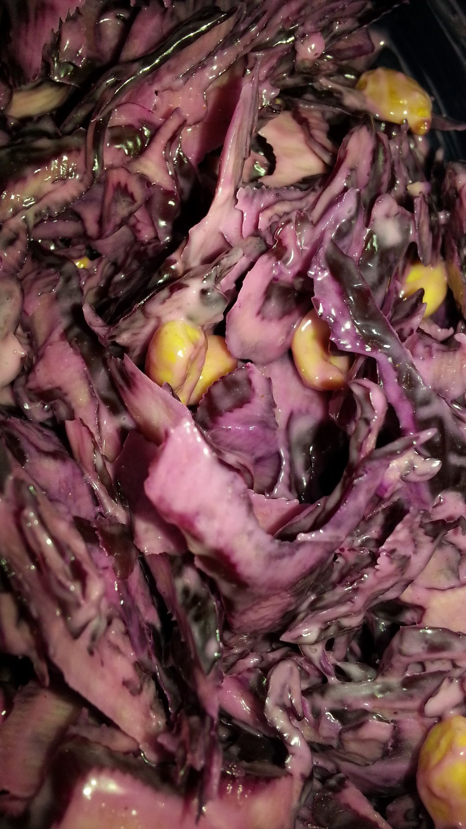 PLEASE check my other uploads. You might also like them. THANKS 4 passing by! No Edit/no Filter Ohne Bearbeitung No People Menschenleer Food Essen Close-up Nahaufnahme Mag Ich Lecker Delicious Rotkohl Rotkraut Kraut Kohl Salad Salat Bowl Schussel Corn Mais Freshness Food And Drink
