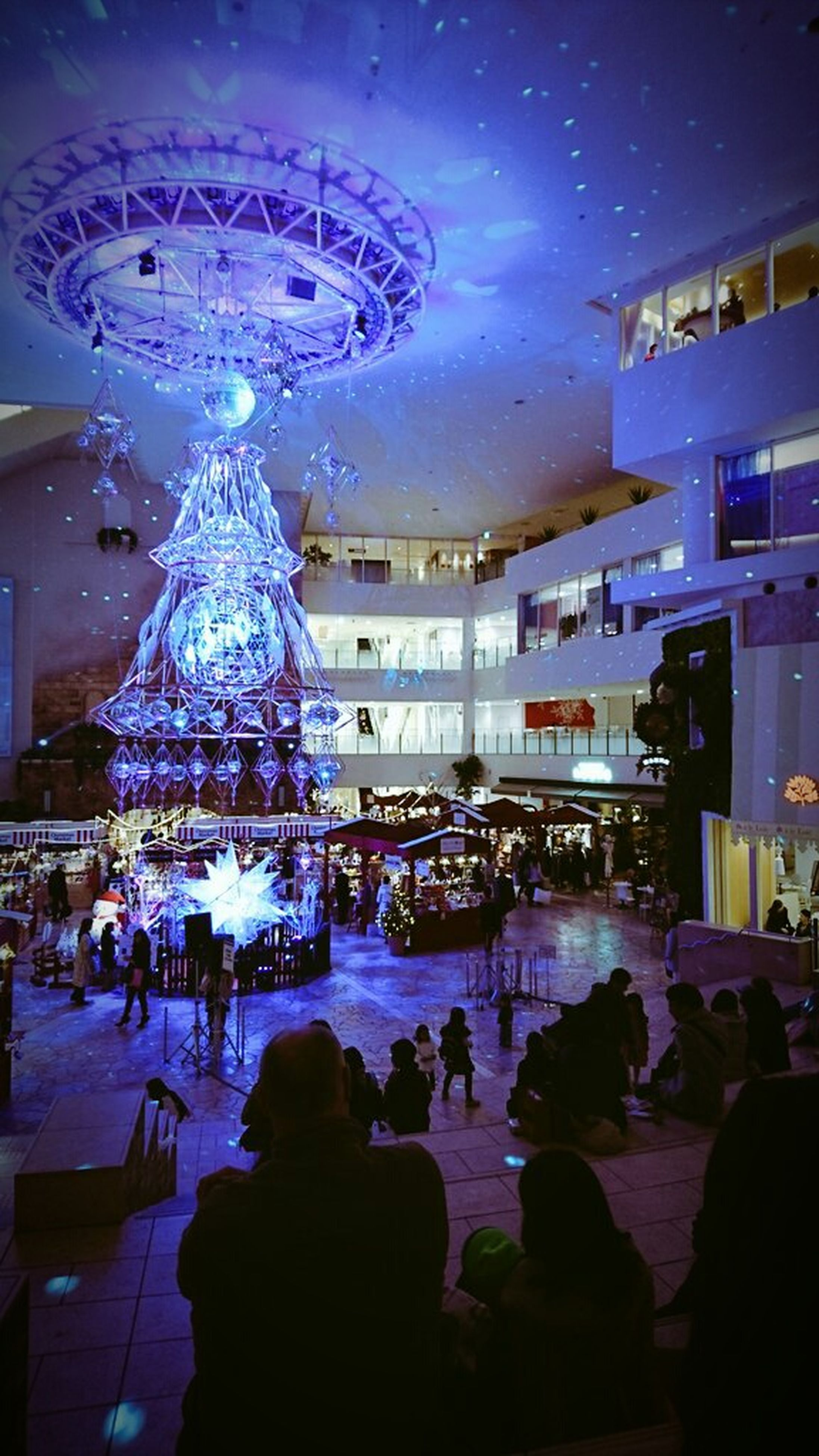 night, christmas tree, christmas, sky, christmas lights, christmas decoration, people, architecture, outdoors, star - space