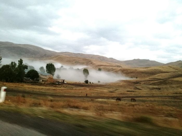 Fog, the village and the horses Landscape Nature No People Tree Cloud - Sky Scenics Beauty In Nature Fog Foggy Landscape Horses Smartphonegraphy Road Outdoors Trees Mountain Village Mountains, Hills, Distant, Scenery, View, Scenic, Landscape, Seascape, Water, Tranquility