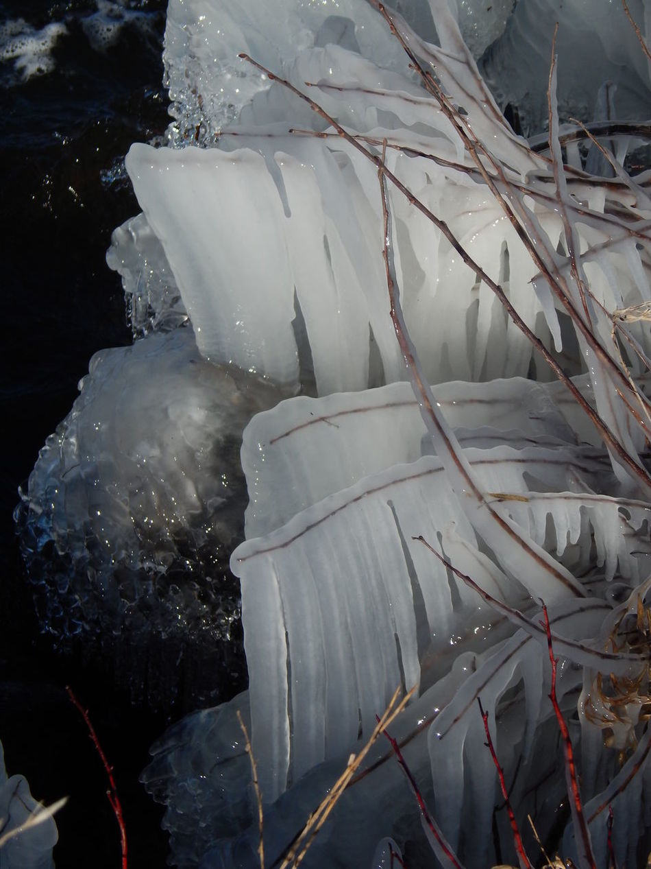 Beauty In Nature Close-up Cold Temperature Day Frozen Ice Iceicles Icicles Minnesota Minnesota Nature Minnesotaphotographer Nature No People Outdoors Snow Water Winter Winter Winterscapes Wintertime