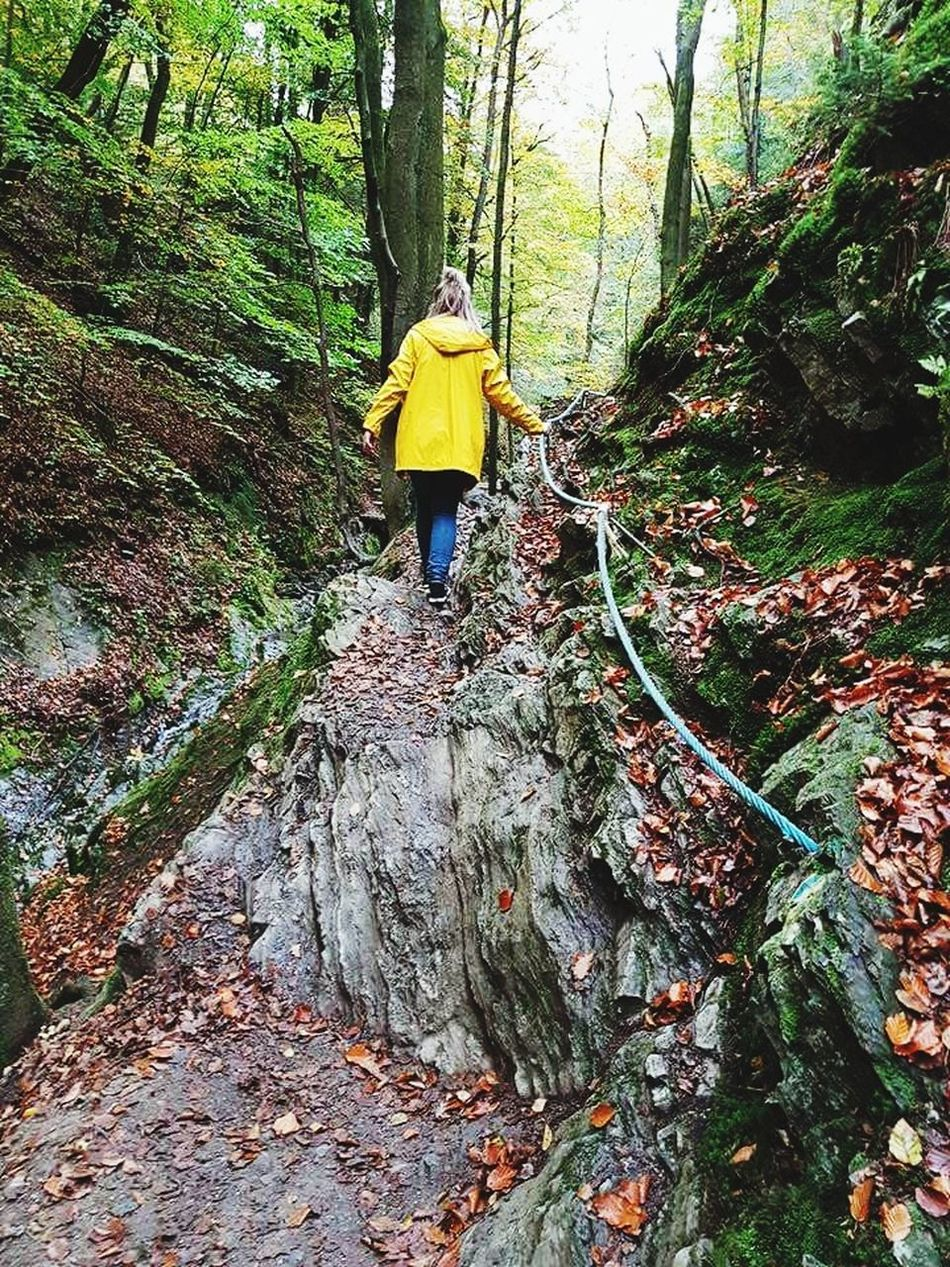 One Person Real People Rear View Walking Standing Day Outdoors Full Length Nature Tree People Belgie Ardennen Belgium Ninglinspo Vacation Yellow Raincoat Love It ❤