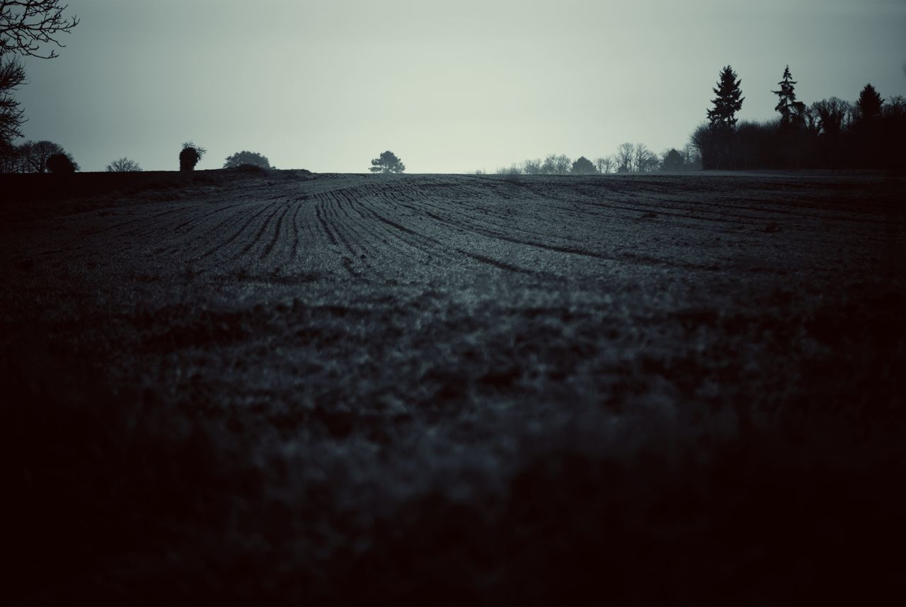 Winter country Agriculture Tranquility Nature Rural Scene Plowed Field Field Tree Landscape Tranquil Scene Outdoors Day Beauty In Nature Capture The Moment Taking Photos Taking Pictures Black & White Black&white Monochrome Black And White