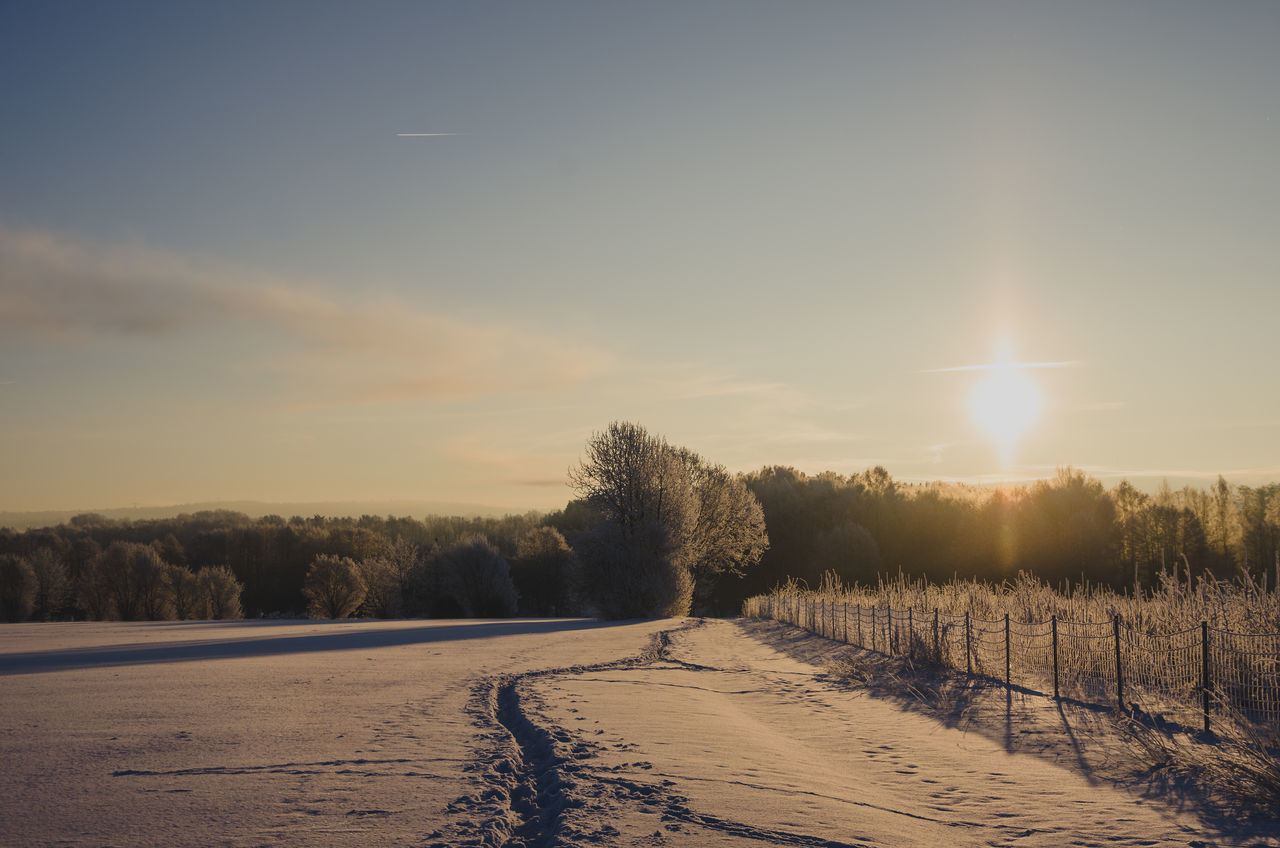 Golden winter morning... Beauty In Nature Winter EyeEm Nature Lover Morning Light Frozen Landscape  Sunset Tree Nature Sky No People Outdoors Klaquax@home Frosty Sunlight Frozen Nature Frosty Morning Cold Temperature Eye4photography  Scenics Wintertime