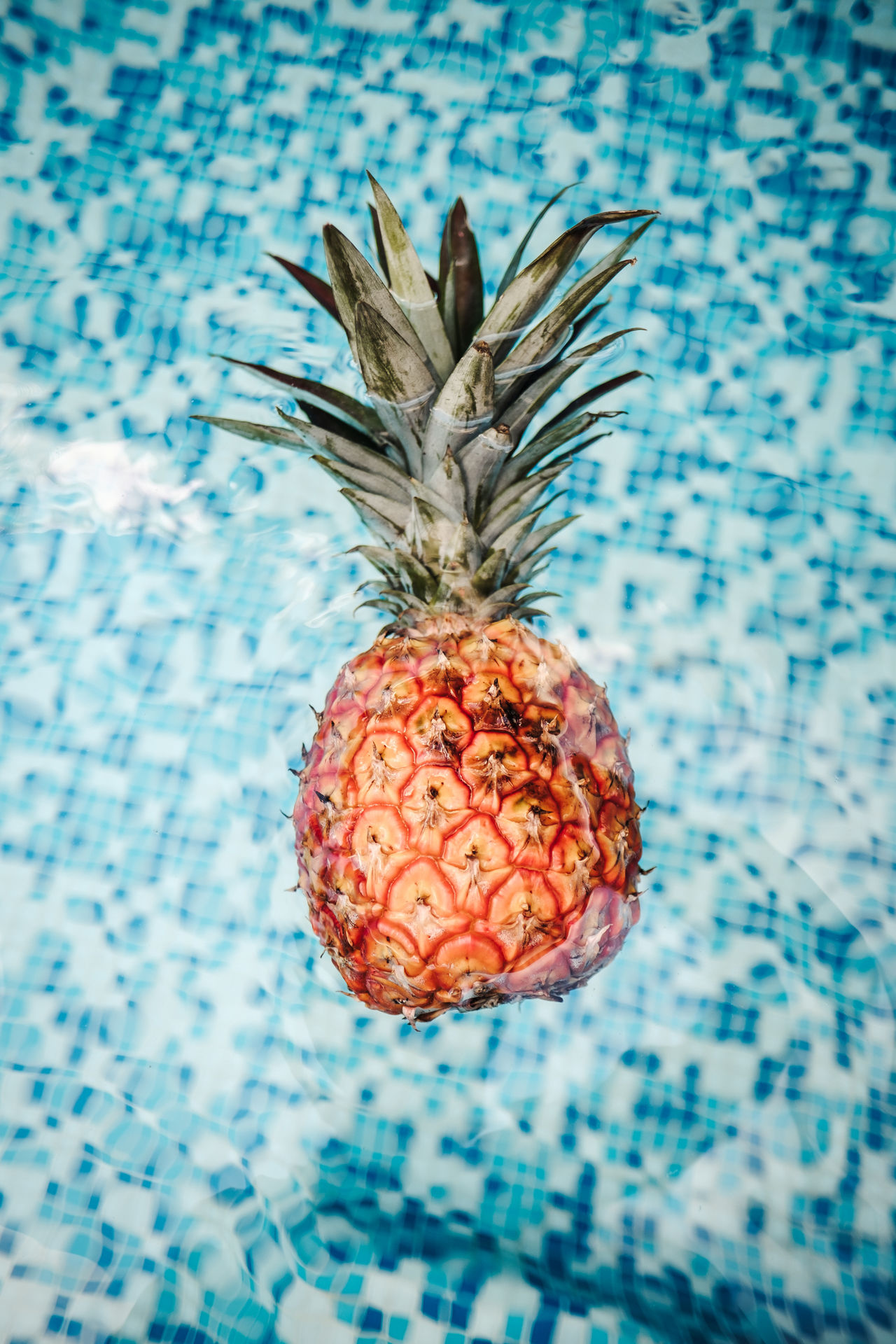 Summer is here. Ananas Beauty In Nature Close-up Day Floating On Water Focus On Foreground Food Food And Drink Freshness Fruit Hanging Healthy Eating Indoors  Nature No People Pineapple Piña Red Summer Summertime Swimming Swimming Pool