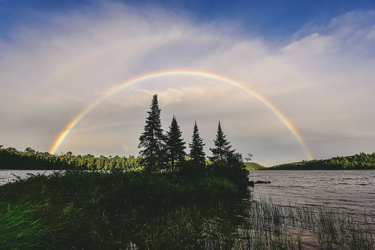 A faint Double Rainbow in Algonquin Park. Beauty In Nature Tree Nature Rainbow Tranquility Forest Environment Outdoors Sky Canada Ontario Algonquinprovincialpark Wildlife & Nature