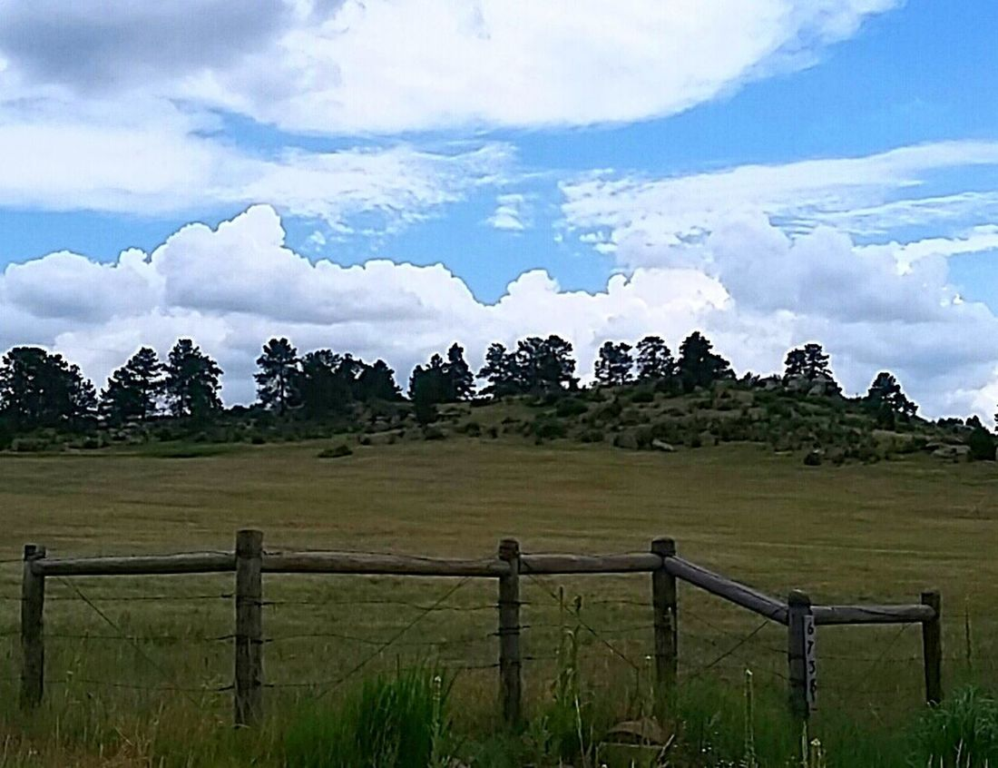 Taking Photos Country Living Outdoors From My Point Of View Landscape Greenery Fence Lines Home Is Where The Art Is