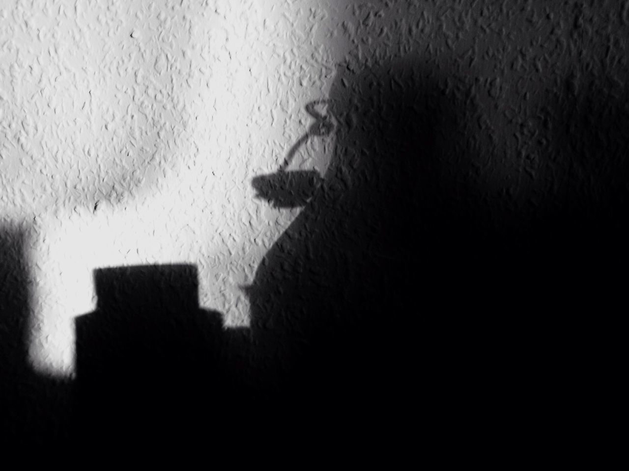 Shadow Indoors  No People Close-up Day Bottle Wall Shadowplay Black And White
