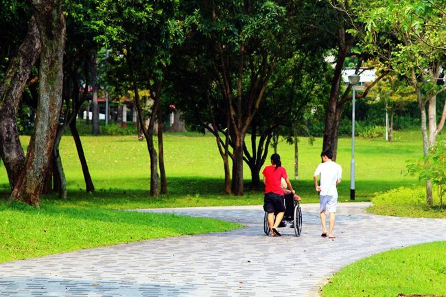 Family walk in the park. How nice to bring your elders to relax in the park :) Family Park Singapore Enjoying Life Relaxing Bishan Park