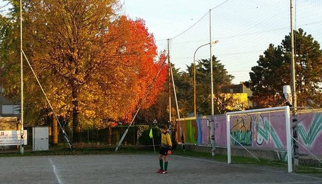 Cuore Nanodelmiocuore 1 Portiere Calcio Football Passione Sport Picture Shoot Travel Shadow Rosso Arancione Lovelivelife Live Power Graffiti Street Sight Sightseeing Moment Keepcalm Calm Readygo autumn red tree naturelovers colorful