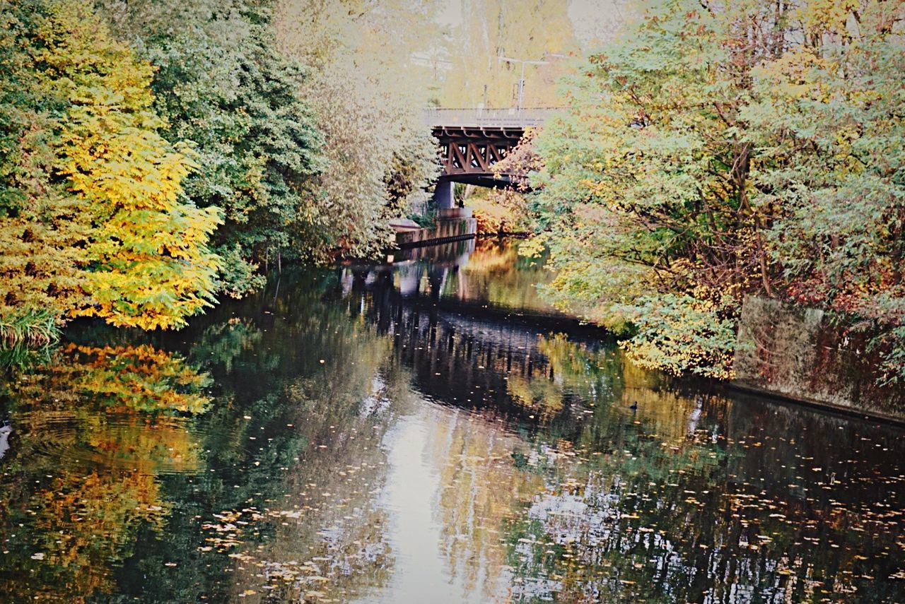 water, reflection, day, outdoors, nature, no people, tree, waterfront, autumn, beauty in nature, scenics, leaf, architecture