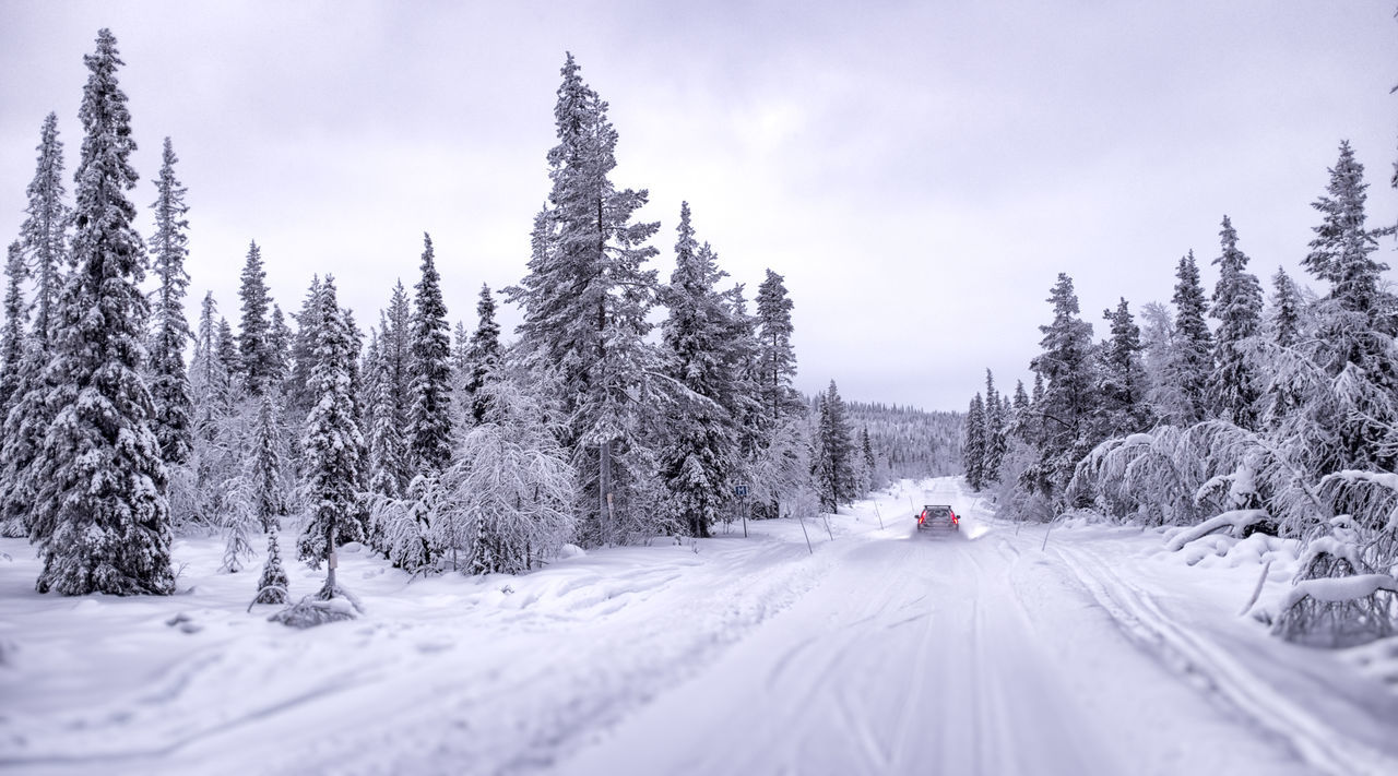 Image result for images of people driving home for christmas