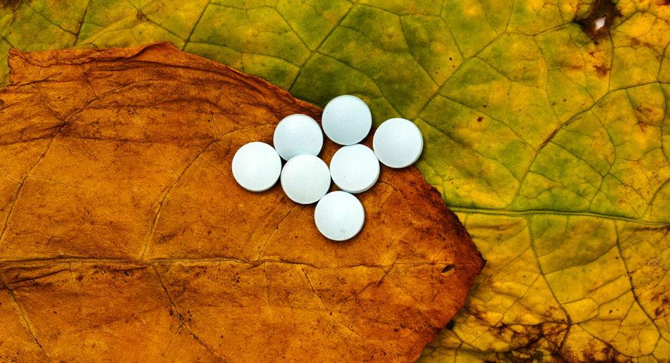 pills on a tobacco leaf Anti Depressant Caps Close-up Leaf Medicine Pill Tablette Tobacco
