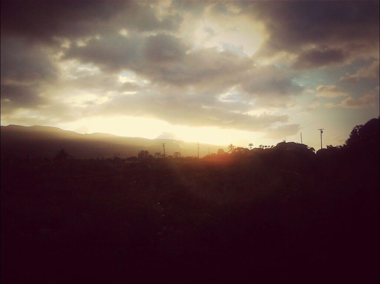 Waialua Sky's