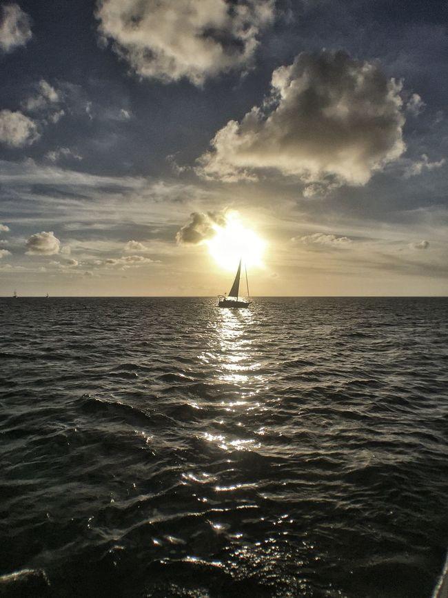 Sailboat Sailing Sail Boat Sunset Backlight