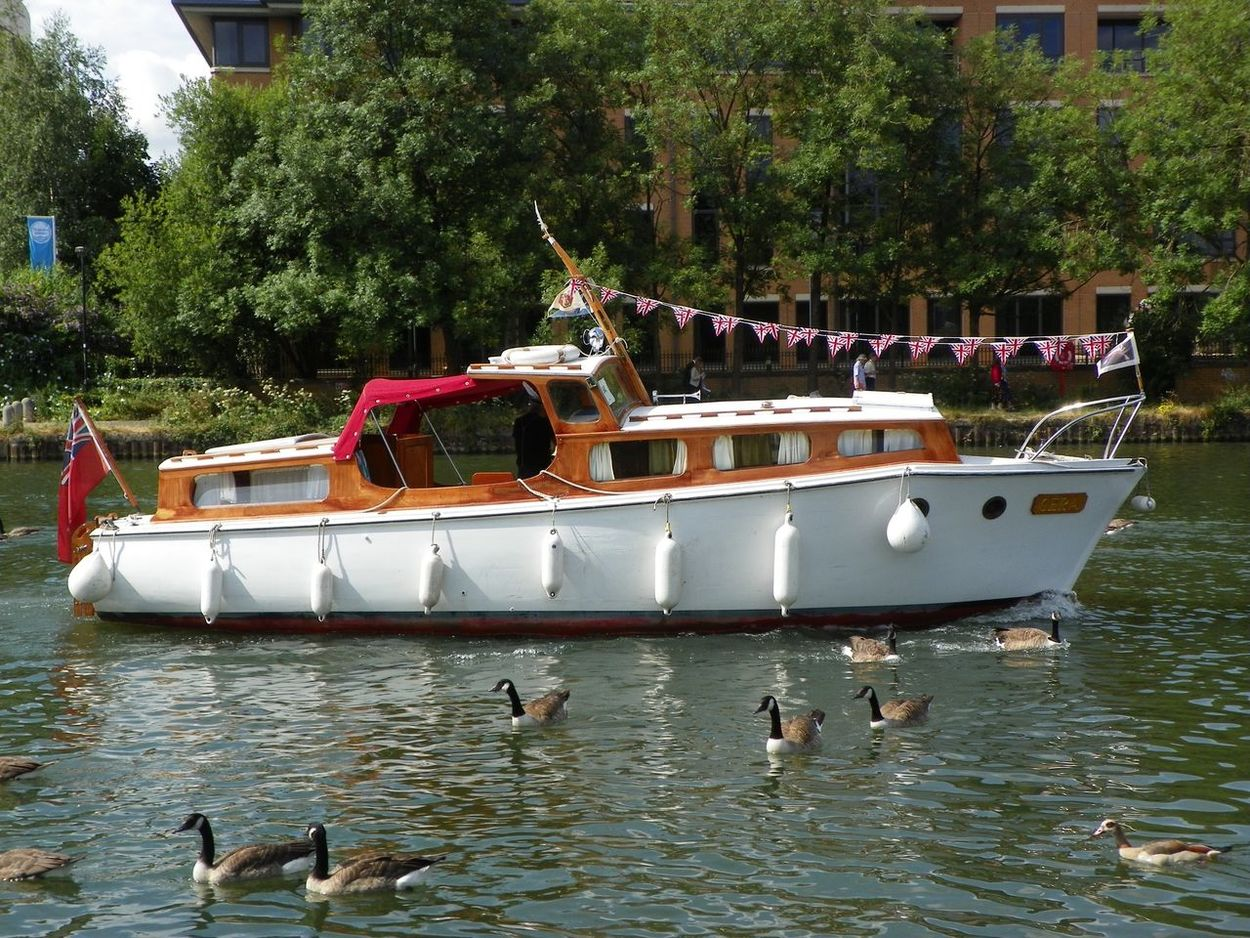 Boat River Nautical Vessel Transportation Mode Of Transport Tree Water Animal Themes Outdoors Nature Day Real People Architecture Beauty In Nature Swan Thames Union Jack Union Flag Ducks Ducks In Water