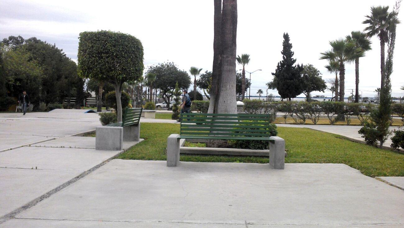 La Banca de UABC  University Alone