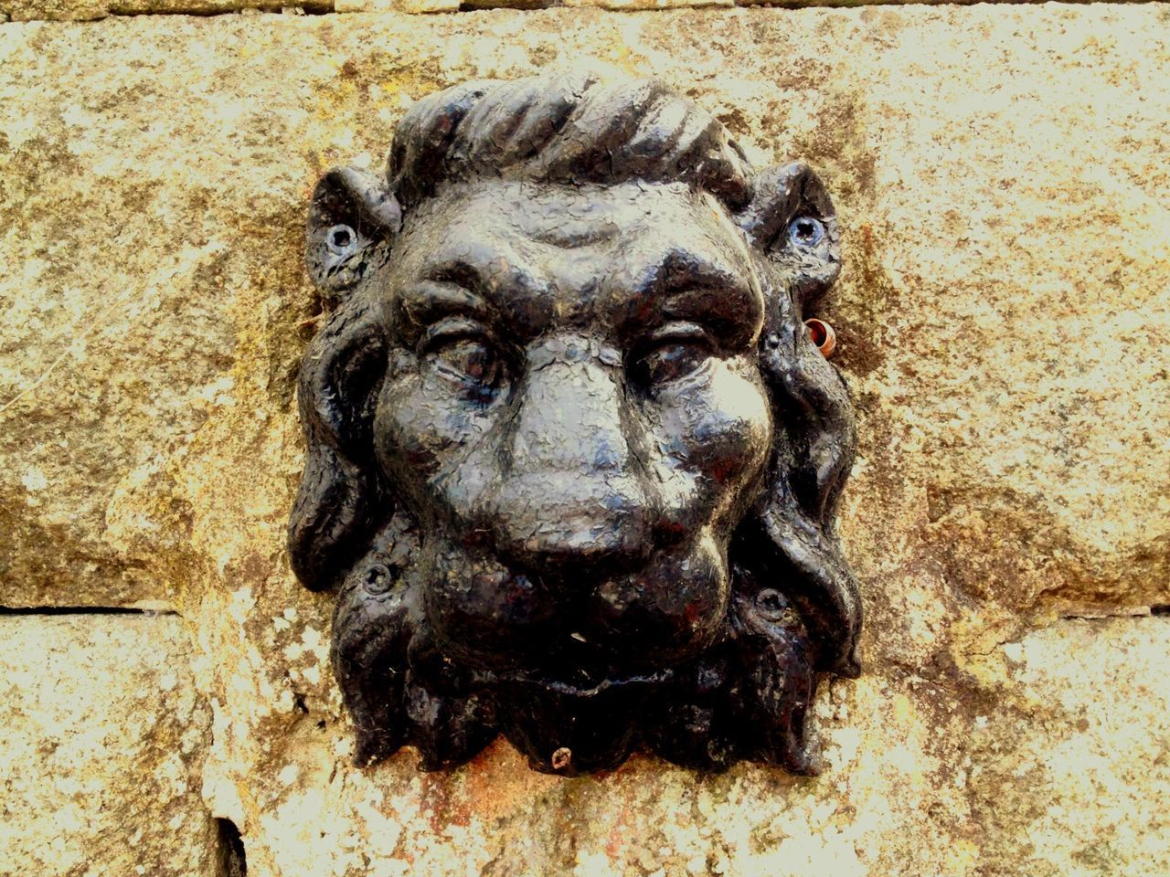 art and craft, close-up, no people, animal head, textured, day, lion - feline, outdoors, animal themes