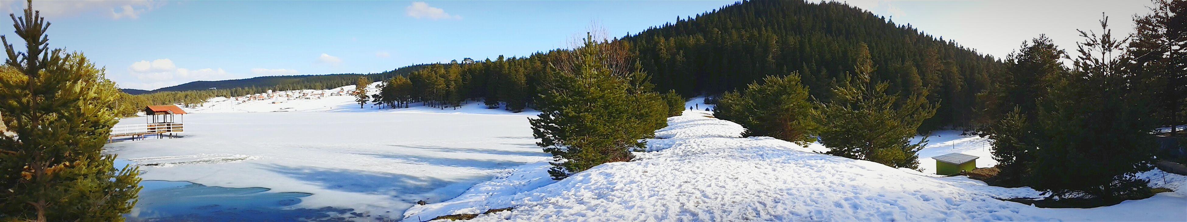 Snowwhite Snow❄⛄ Manzara Agaclar Hello World Trees Natural Sunyshine Beautiful Nature Taking Photos #bolu # saraycik yaylası