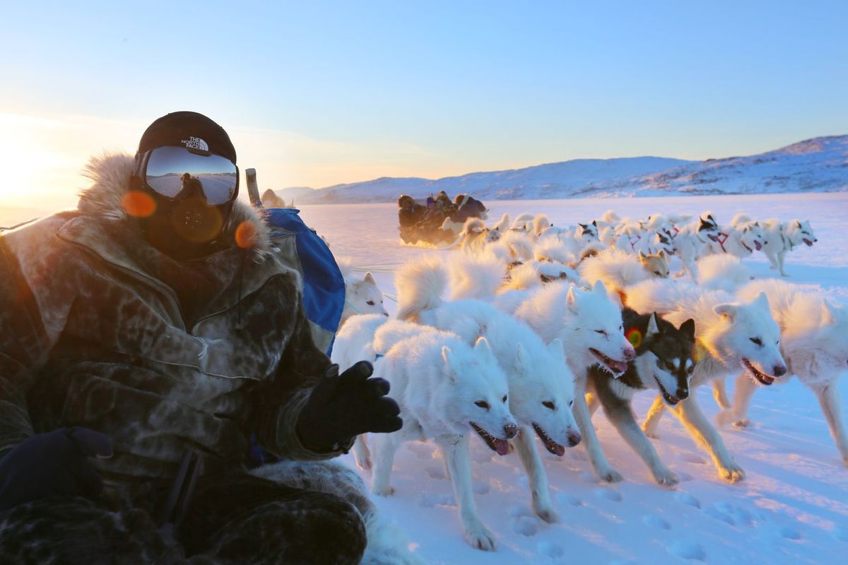 Greenland,ilulissat Greenland Travel,dog-sledding, sunshine Adventure Landscape Travel Destinations Snow Sunset Beauty In Nature Have Fun Photography Themes
