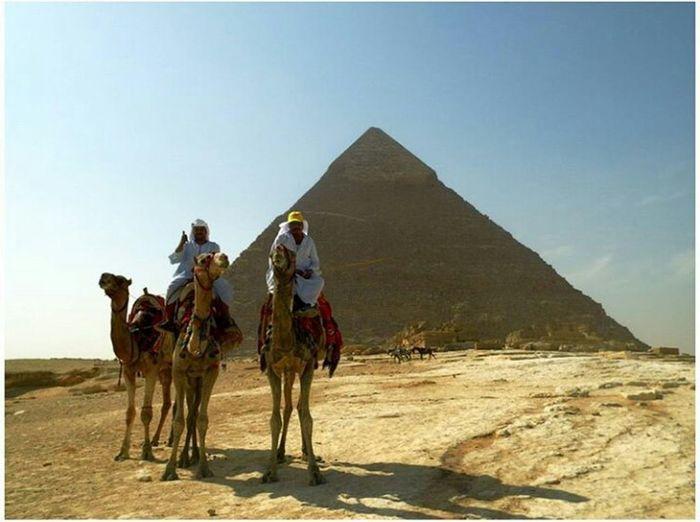 Egypt Egyptissafe Discover Your City View Egyptian Camels Photooftheday Photographer Photoshoot Arabs Followme Takenbyme Follow #f4f #followme #TagsForLikes #TFLers #followforfollow #follow4follow #teamfollowback #followher #followbackteam #followh Beauty Sun Desert LiveYourLife Amazingview Like Follow Sky Nature Thepyramids Pharaoh
