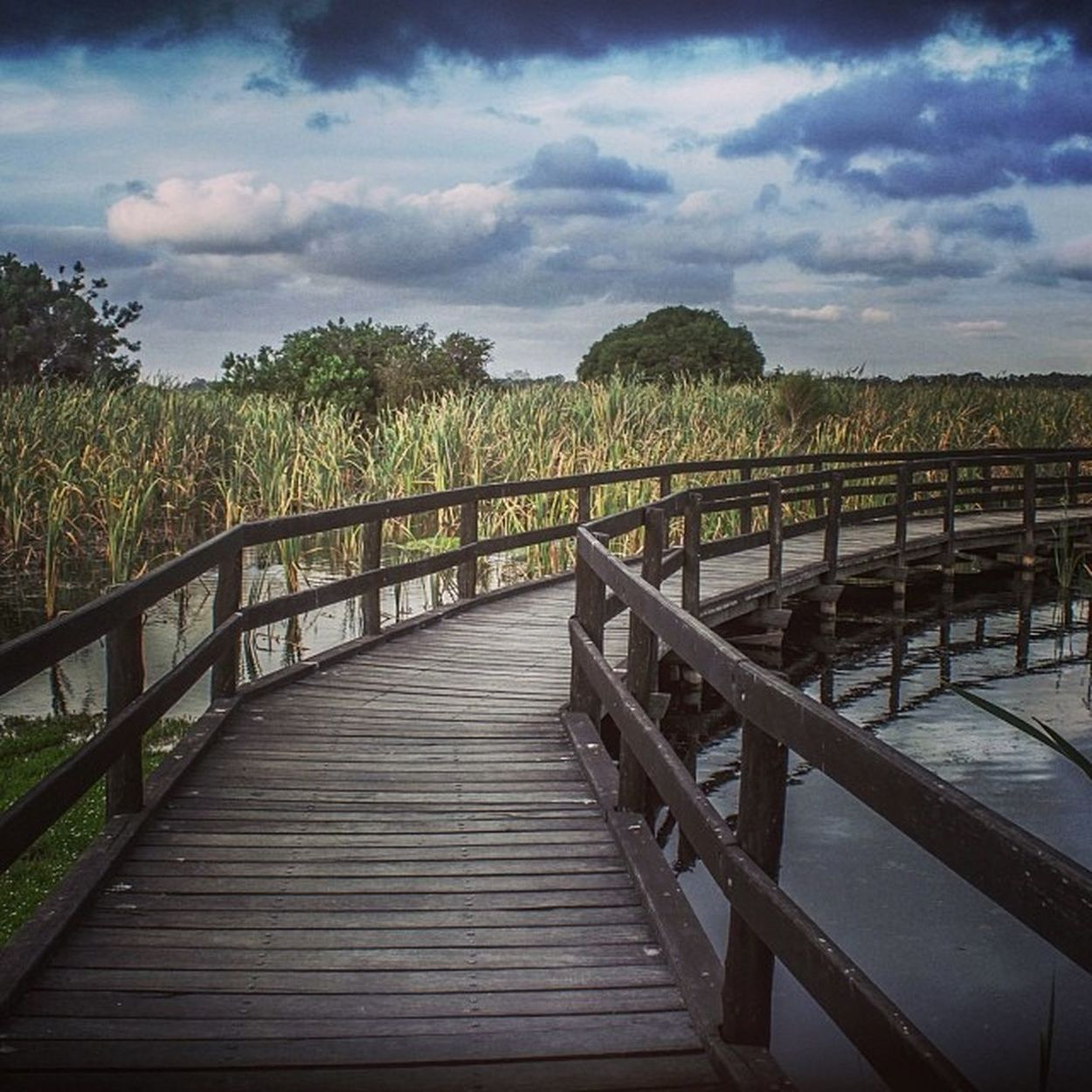 Herdsman lake regional park