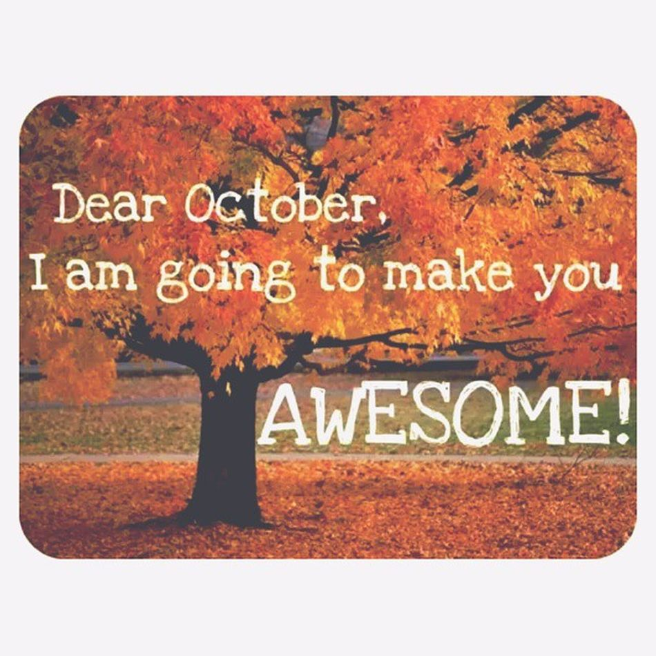 Woke up to a cool crisp fall breeze??.. leaves changing ???, drinking pumpkin spice coffee ☕ ? Le sigh I love the -ber months! (Without the snow) October Fall Seasonchange Blessedtoseeit Morningreflection Anewmonthtoprogress Matthew6:34