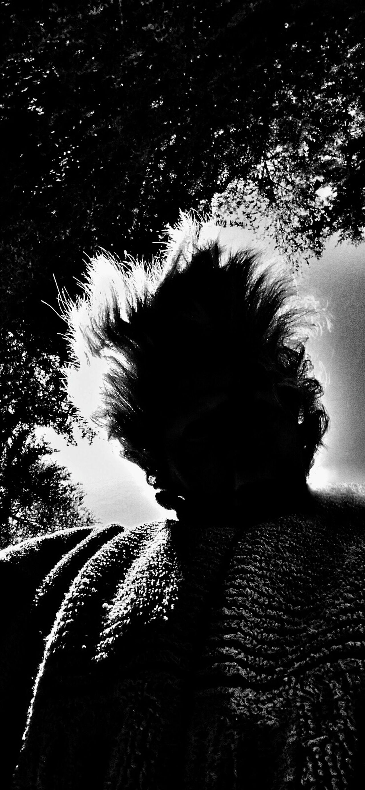 Let Your Hair Down Backlight Backlit Back Lit Contrast Blackandwhite Black Dark_portraits Strange Silhouette Faceless Faceless Portrait Facelessportraits FacelessPortrait BestofEyeEm