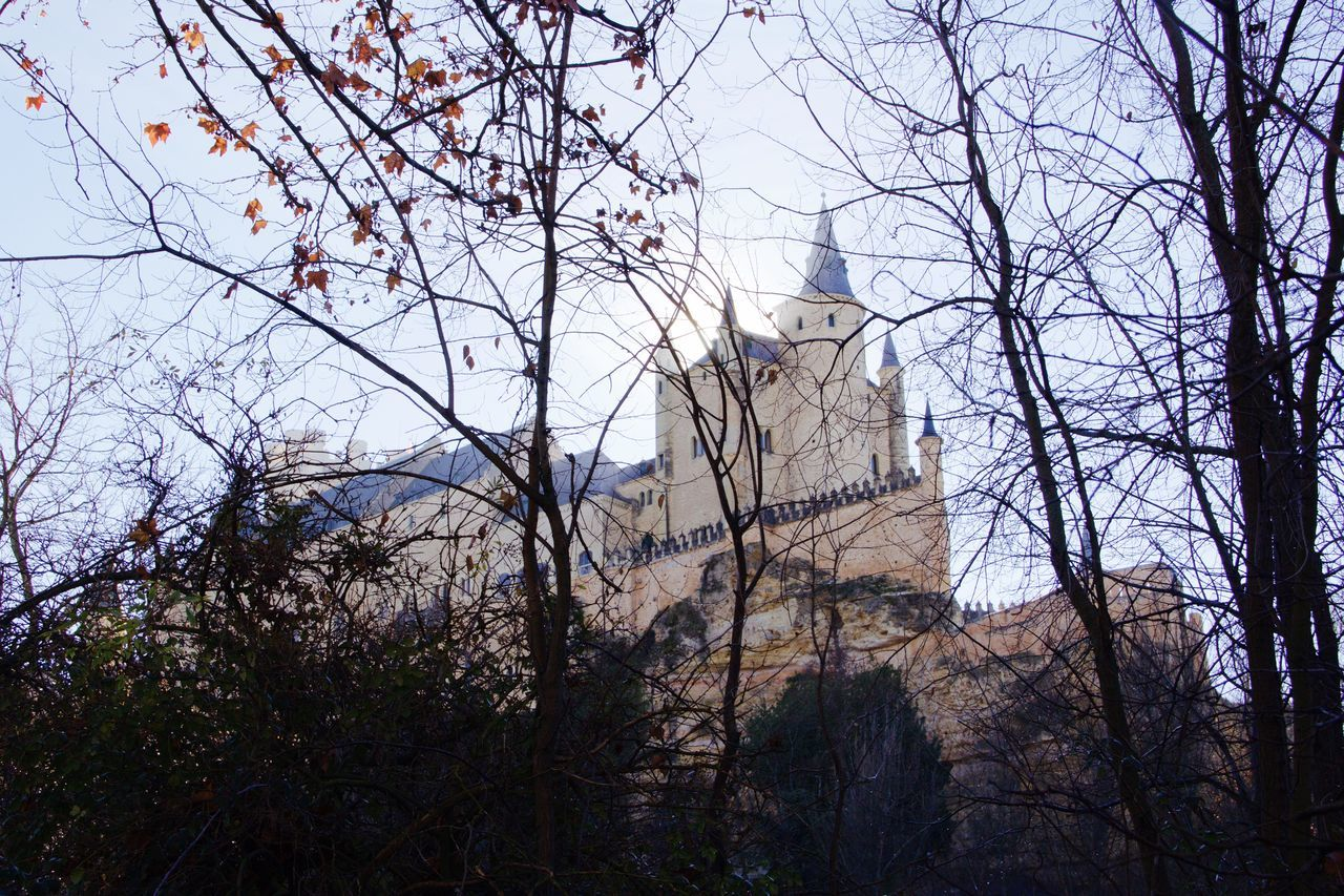 Alcazar Alcazar De Segovia Architecture Autumn Bare Tree Beside Between Shadows Castle Day Forest Interesting Perspectives Low Angle View Nature Nature Outdoors Tree Trees Winter Wood
